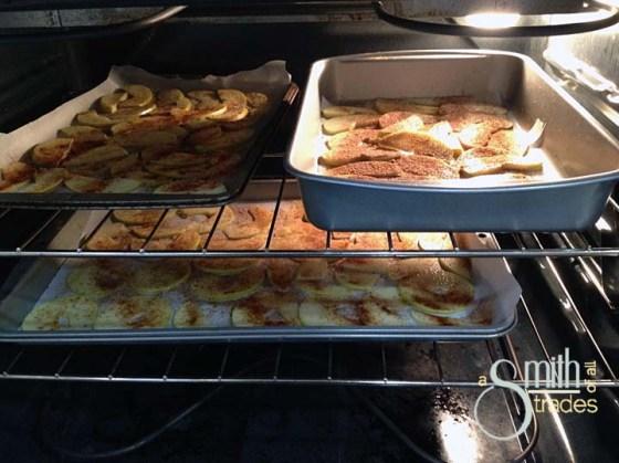 Apple Chips 3