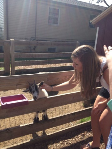 Allie feeding the goats.