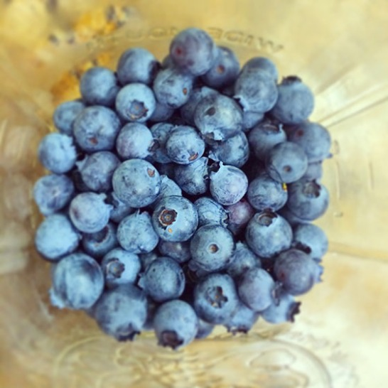 Blueberries in a jar