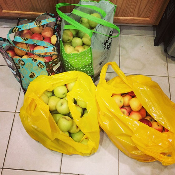 Apples_Bags
