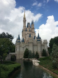 Magic Kingdom-Castle