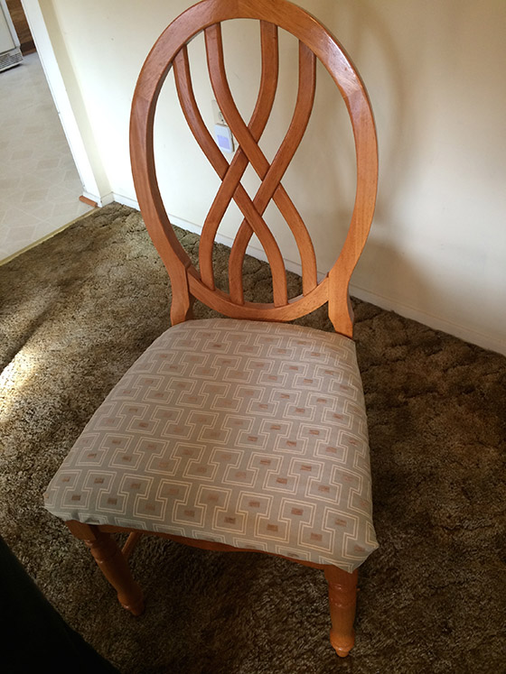 Robin's Finished Chair