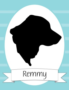 Remmy Silhouette