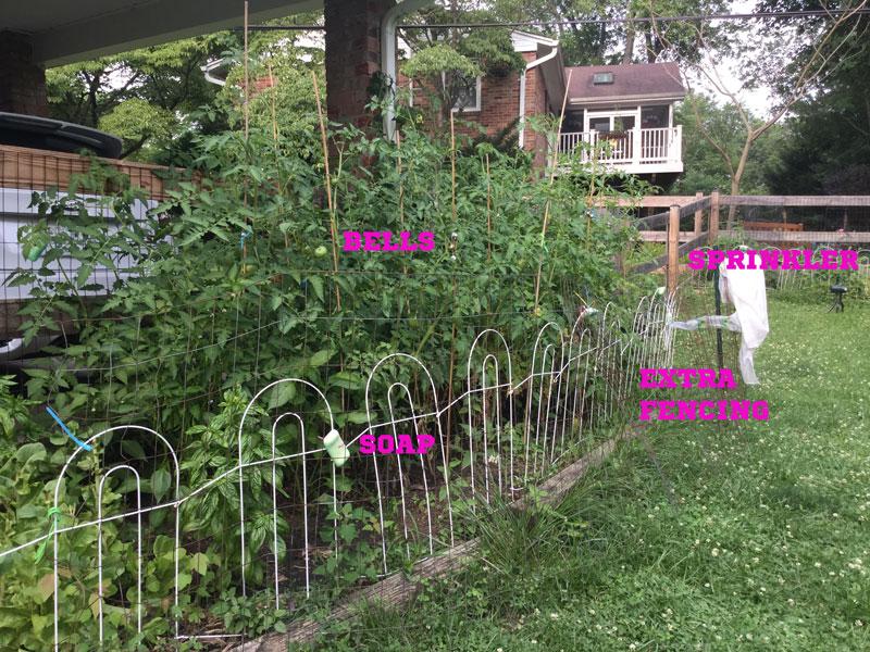 GardenProtection
