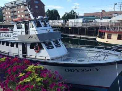 Portland_Odyssey