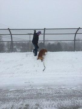 Boys-on-snow-bank